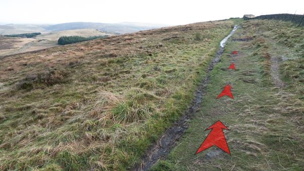 A photo of step 5 of the Cats Tor route, with red arrows superimposed to show the way.