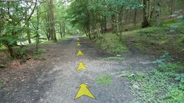 A photo of step 7 of the Fernilee Reservoir route, with yellow arrows superimposed to show the way.
