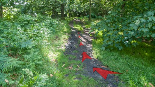 A photo of step 2 of the Shining Tor route, with red arrows superimposed to show the way.