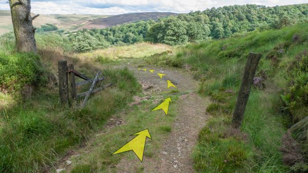 A photo of step 6 of the Shining Tor route, with yellow arrows superimposed to show the way.