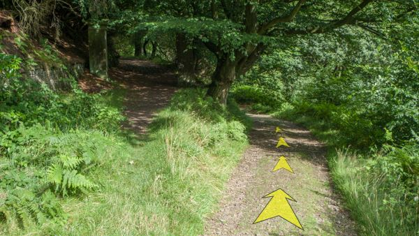 A photo of step 9 of the Shining Tor route, with yellow arrows superimposed to show the way.