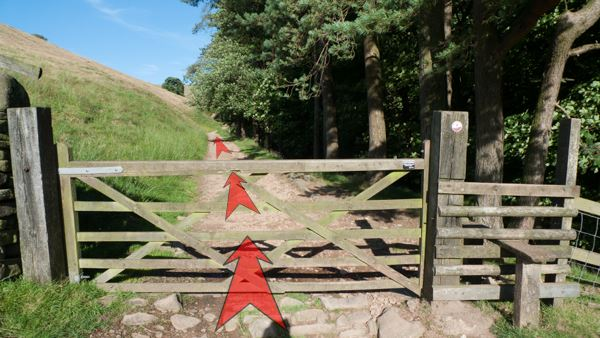 A photo of step 5 of the Three Shires Head route, with red arrows superimposed to show the way.