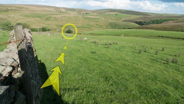 A photo of step 2 of the Three Shires Head route, with yellow arrows superimposed to show the way.
