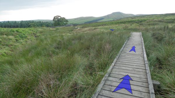 A photo of step 5 of the Three Shires Head route, with blue arrows superimposed to show the way.